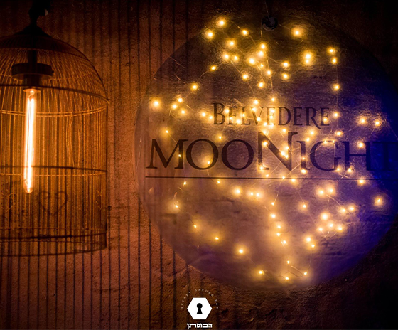 Belvedere Moon Night Party